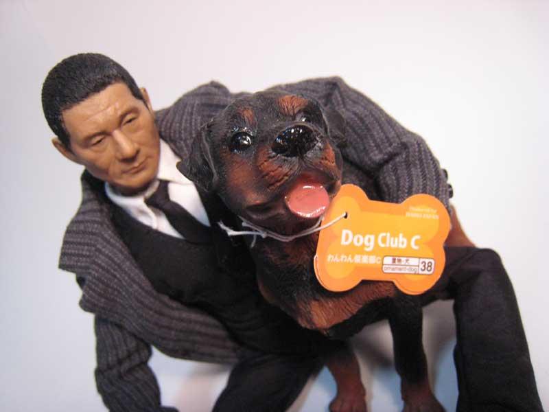 1/6 ヘッドプレイ たけし と ダイソー100円犬