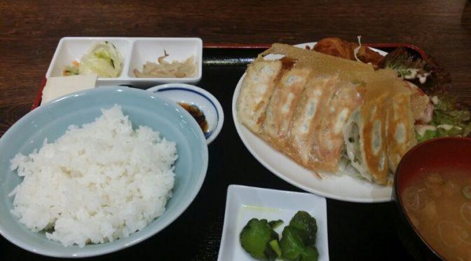 宇都宮 典満餃子 焼き餃子唐揚げ定食を食べてみました。